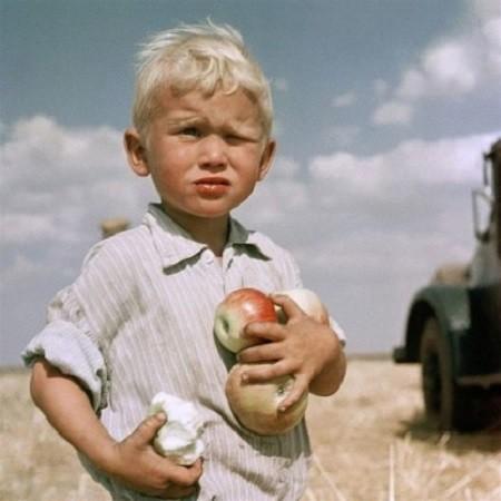 На целине. Кустанайская область, 1962 год. Моменты из прошлого, СССР, детство, ностальгия, подборка